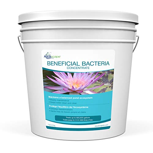 Aquascape Dry Beneficial Bacteria for Pond and Water Fe...